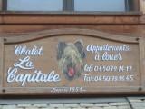 facade-chien-5048
